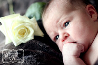 Giannettino ~ Madison Newborn Photography